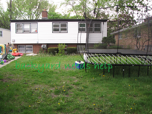Backyard Makeover Show : First let me show you my Before the Backyard makeover photo Don?t