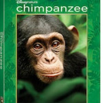 Disneynature's CHIMPANZEE on Blu-ray Combo Pack (Blu-ray + DVD) Available in Stores #Giveaway