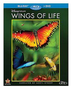 wings-of-life-disneynature
