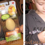 Dinosaur Train Hatchers Review + Cake Decorating set Giveway