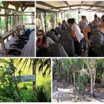 Adrenaline Rush! Adventurous Ziplining at EcoSafari in Florida