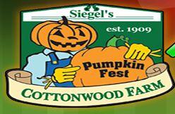 pumpkin-farm-chicago