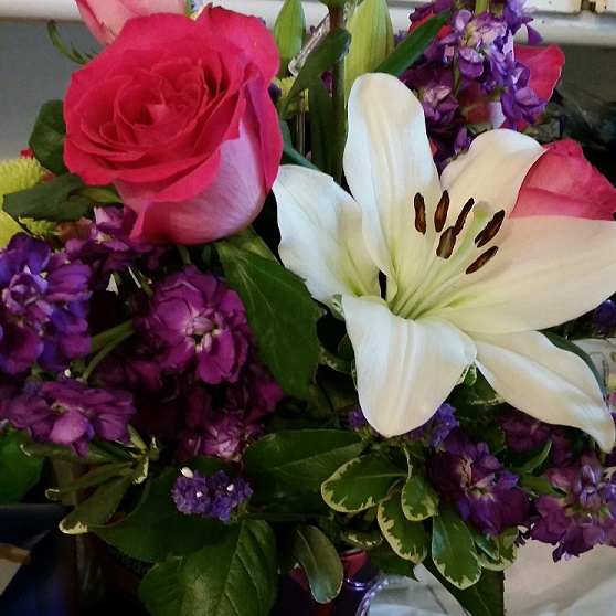 roses-lily-Flowers