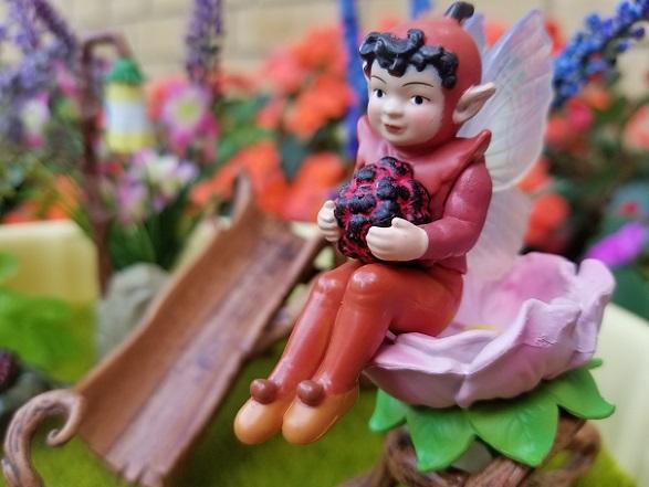 fairies-garden